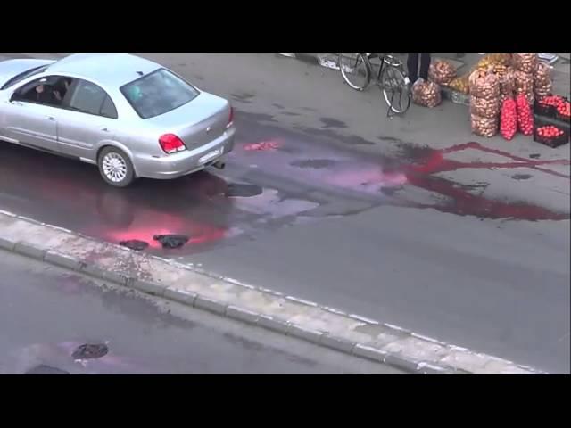 امتحان الدم الزاهرة القديمة