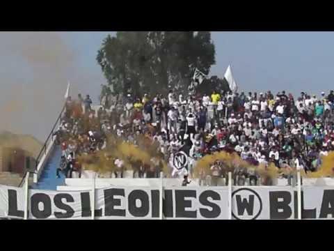 WALTER ORMEÑO EQUIPO Y SU BARRA LOS LEONES BLANCOS - Los Leones Blancos - Walter Ormeño