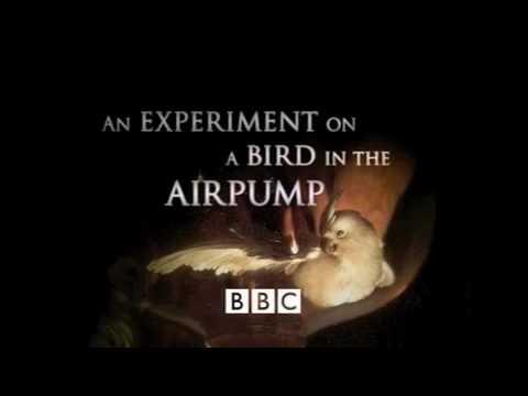 Bird in the airpump