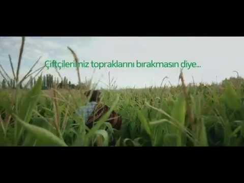 Oğlum, kızım neden bu toprakları bırakıp gidiyorsunuz? / Pınar Öğünç