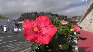 San Sebastian de la Gomer Spain  City new picture : Mein Schiff 4 -