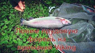 Ловля Прудовой Форели VIKING