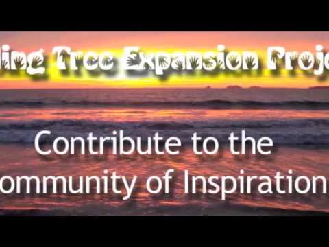 bending-tree-expansion-project