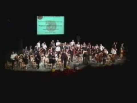 Регионални симфонијски оркестар свира за Чачане и Ужичане