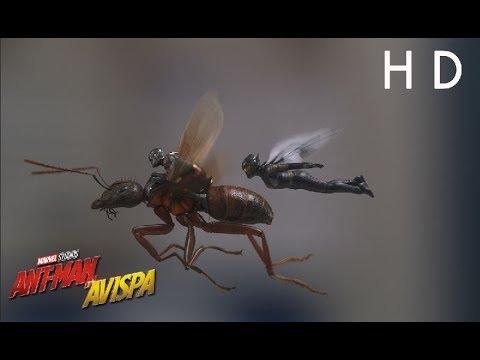 Ant-Man y la Avispa - ¡Comienza la producción!?>