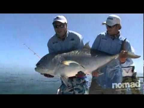 Nomad Sportfishing - Big Fish Massive Variety GT Fishing On The Coral Sea