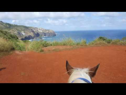 Horseback Riding at the Mendes Ranch in Maui, Hawaii