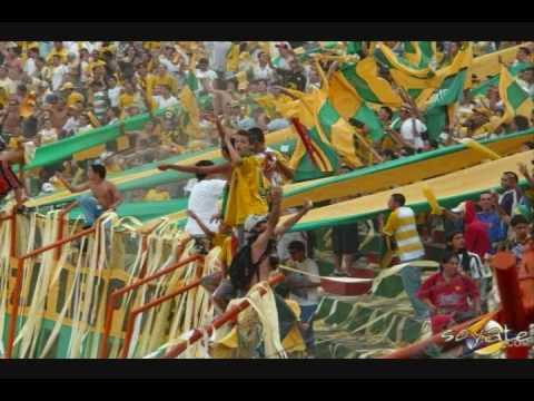 Atletico bucaramanga - Fortaleza Leoparda - Arde la ciudad - Fortaleza Leoparda Sur - Atlético Bucaramanga