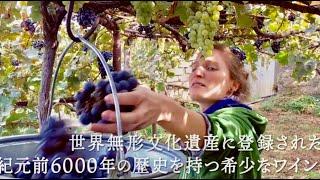自然派ワインにまつわるドキュメンタリー特集上映「映画で旅する自然派ワイン」予告編