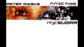 Aster Aweke - Fikir Fikir 2001.mp4