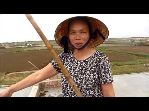 Nhọc nhằn nghề muối, Diễn Bích, Diễn Châu, Nghệ An