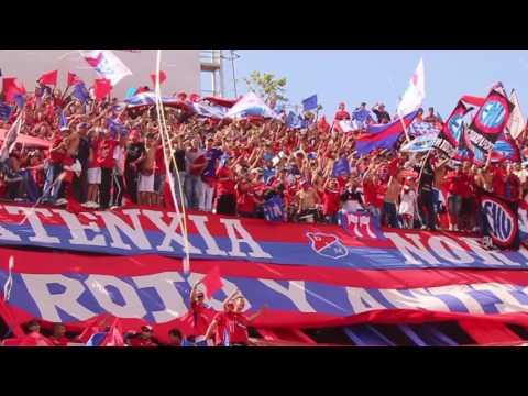Esta hinchada se merece ser campeón  / Dim vs cali  / Liga I 2016 - Rexixtenxia Norte - Independiente Medellín