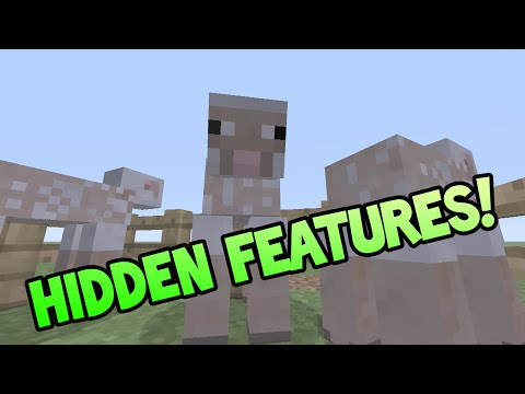 Minecraft (Xbox360/PS3) – TU19 UPDATE! – HIDDEN FEATURES! + SECRETS! + MORE