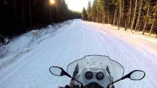 5. Luap Snowflake, late afternoon, near Bosebuck Camp Maine, January 2015