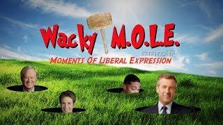 Download Video Wacky MOLE: Media on Slippery Slope of Smollett MP3 3GP MP4