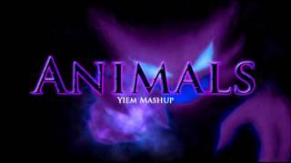 Martin Garrix Ft Steve Aoki - Animals (Yiem Mashup)