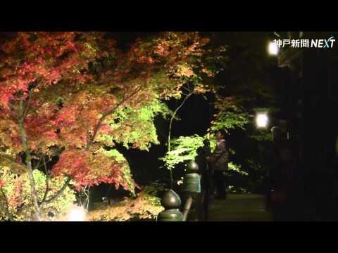 播州清水寺の紅葉ライトアップ