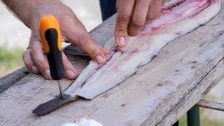 Come si pulisce l'anguilla? Una tecnica di pulizia semplice per chi è alle prime armi e si trova in difficoltà nel pulire l'anguilla...