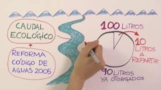 Caudal Ecológico mínimo, la iniciativa que busca salvar los ríos de Chile