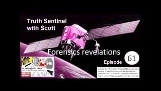 Forensic Revelations