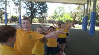 Mittagong Australia  city images : Pharrell Williams - Happy (Mittagong Public School)