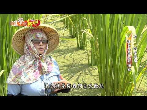 【新希望農村1】- 生態復育,舞動農村心旅行(南投埔里一新社區)