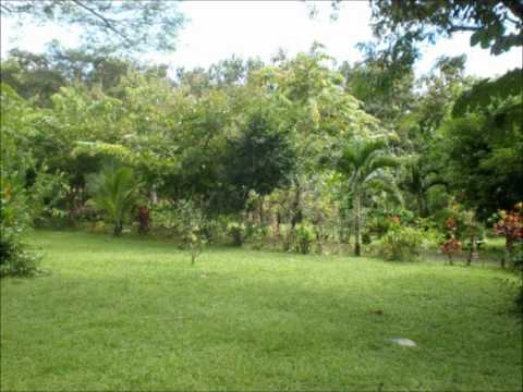 Costa Rica real estate – Quiet paradise surrounded by beautiful hilly scenery close to Esterillos