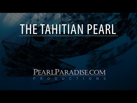 pearl - Join Jeremy Shepherd, founder and CEO of PearlParadise.com, Inc, on a Tahitian pearl farm on the atoll of Takaroa in French Polynesia.