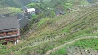 The LongJi hillside rice terraces