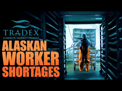 3MMI - Alaska Worker Shortage, Effects on the Salmon Market This Year