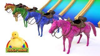 Belajar Warna dengan Hewan Kuda untuk Anak - Anak   Learn Animals Name and Sound
