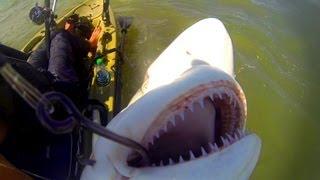 Video Kayak Fishing: Offshore Trip Gone Wrong - Part 3 MP3, 3GP, MP4, WEBM, AVI, FLV Oktober 2018
