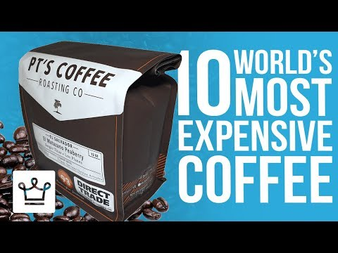 Top 10 Most Expensive Coffee In The World