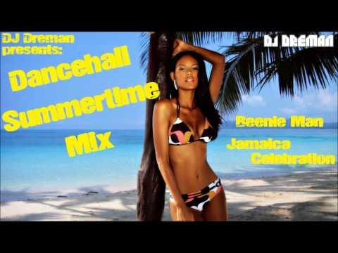 Dancehall Summertime Mix 2013 - DJ Dreman - June 2013