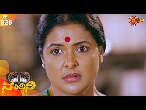 Nandini - Episode 826 | 21th Dec 19 | Udaya TV Serial | Kannada Serial