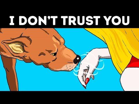 Honden die aanvoelen dat mensen niet te vertrouwen zijn