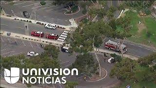 Una van que transportaba niños de entre 9 a 12 años se estrelló contra un árbol