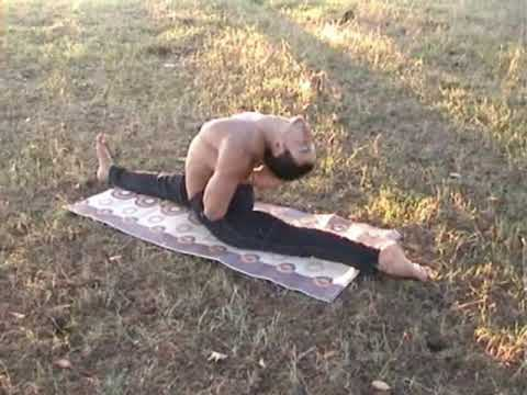 lot of hatha yoga asanas/ by Zura Kazishvili