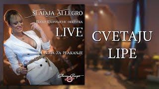 Sladja Allegro - Cvetaju Lipe