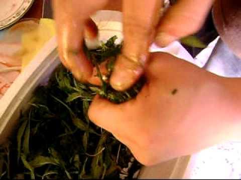 cannabis marihuana prensado casero.