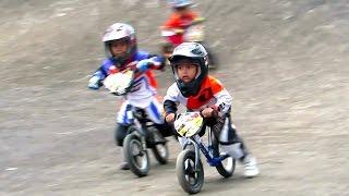 Video ANAK KECIL BALAP SEPEDA BMX LUCU - Jogjakarta Bike Racing, Youth Center Circuit  (BMX INDONESIA) MP3, 3GP, MP4, WEBM, AVI, FLV November 2017