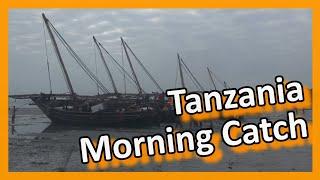 Bagamoyo Tanzania  city images : Tanzania - Bagamoyo: Return of the fishermen