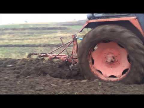 Universal 651 Turbo La Arat // Plowing // Orka 2012
