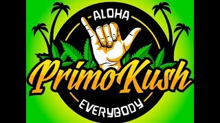 Strain Review: Panama Red + Latest News On My Liver Transplant Journey by Primo Kush