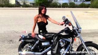 9. Used 2009 Harley-Davidson FXDB Dyna Street Bob for sale Call for Price