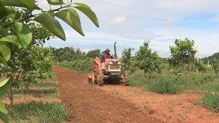 Tin tức 24h mới nhất hôm nay: Thạch Thành dồn điền đổi thửa để cơ giới hóa nông nghiệpXem #TinTuc hấp dẫn, Tổng Hợp #Video Mới nhất về #Tintuc24h Việt Nam - Quốc Tế nóng bỏng nhất đang diễn ra trong thời gian qua. Kênh Tin Báo Nhân Dân sẽ cập nhật đến các bạn các thông tin đầy đủ nhất tại đây. Mời bạn đón xem nhé !Đăng Ký Xem Video #tinmoi Miễn Phí: http://goo.gl/dVkSzA1. Bản #tinthoisu -- https://goo.gl/P6kNXd2. Tin Dự báo thời tiết -- https://goo.gl/YNpoJx3. Tổng Hợp #tintrongnuoc -- https://goo.gl/la17CV4. Seri Điều Tra Phá Án Lần theo dấu vết -- https://goo.gl/iHDMiJ5. Phóng Sự Điều Tra Chống Buôn Lậu -- https://goo.gl/TW5Hrj6. Phim Phá Án 75 Tập -- https://goo.gl/sySkMa7. Sức Khỏe Cuộc Sống -- https://goo.gl/yDGMVZ