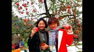 Chungju-si South Korea  city photo : 2016.11.5.(토) 가을 역사 문학기행 및 사과 따기 체험