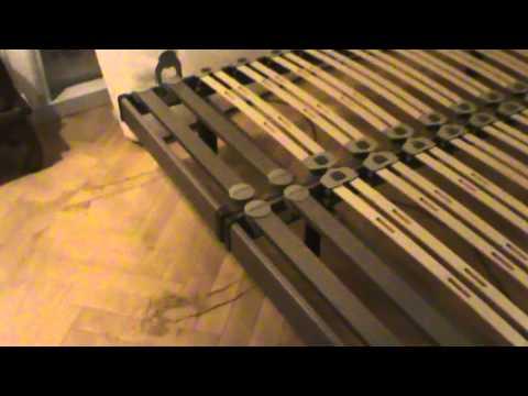 comment traiter puce de lit