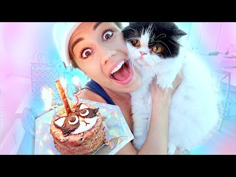 THROWING MY CAT A BIRTHDAY PARTY! (видео)