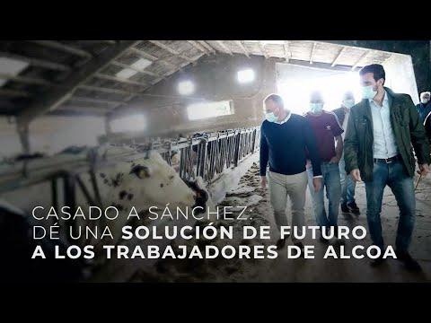 """Casado a Sánchez: """"Dé una solución de futuro a los trabajadores de Alcoa"""""""